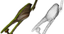 research:topics:image-based_3d_reconstruction:bird_recon_geom.png